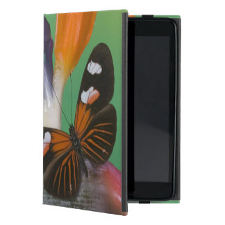 Sammamish Washington Photograph of Butterfly on 6 Cases For iPad Mini