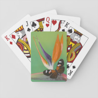 Sammamish Washington Photograph of Butterfly on 6 Playing Cards