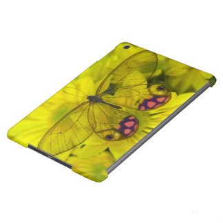 Sammamish Washington Photograph of Butterfly on 8 Cover For iPad Air