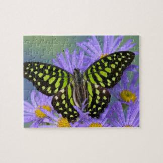 Sammamish Washington Photograph of Butterfly on 9 Jigsaw Puzzle