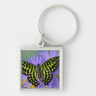 Sammamish Washington Photograph of Butterfly on 9 Keychain