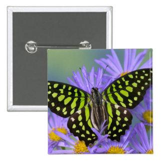 Sammamish Washington Photograph of Butterfly on 9 Pinback Button