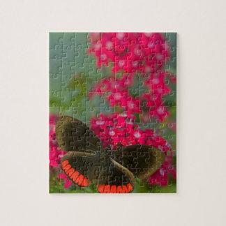 Sammamish Washington Photograph of Butterfly on Jigsaw Puzzle