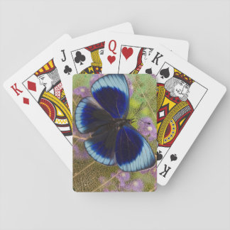 Sammamish Washington Photograph of Butterfly Playing Cards