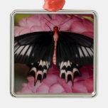 Sammamish, Washington. Tropical Butterflies 10 Metal Ornament