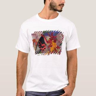 Sammamish, Washington. Tropical Butterflies 12 T-Shirt