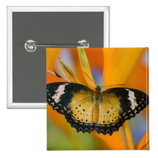 Sammamish, Washington. Tropical Butterflies 18 Button