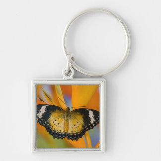 Sammamish, Washington. Tropical Butterflies 18 Keychain