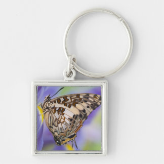 Sammamish, Washington. Tropical Butterflies 22 Keychain