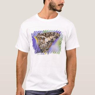 Sammamish, Washington. Tropical Butterflies 22 T-Shirt