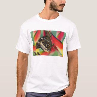 Sammamish, Washington. Tropical Butterflies 32 T-Shirt
