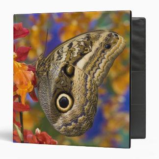 Sammamish, Washington. Tropical Butterflies 35 3 Ring Binder