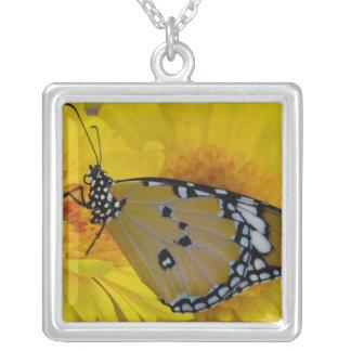 Sammamish, Washington. Tropical Butterflies 38 Square Pendant Necklace