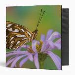 Sammamish, Washington. Tropical Butterflies 40 Vinyl Binders