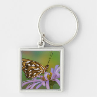 Sammamish, Washington. Tropical Butterflies 40 Keychain