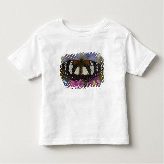 Sammamish, Washington. Tropical Butterflies 41 Toddler T-shirt
