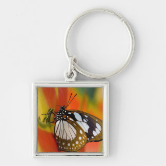 Sammamish, Washington. Tropical Butterflies 42 Keychain