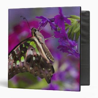 Sammamish, Washington. Tropical Butterflies 45 Binder