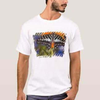 Sammamish, Washington. Tropical Butterflies 50 T-Shirt