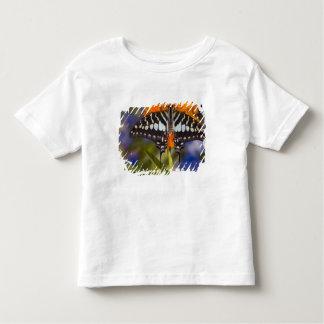 Sammamish, Washington. Tropical Butterflies 50 Toddler T-shirt