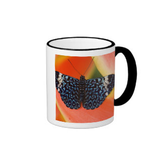 Sammamish, Washington. Tropical Butterflies 53 Mug