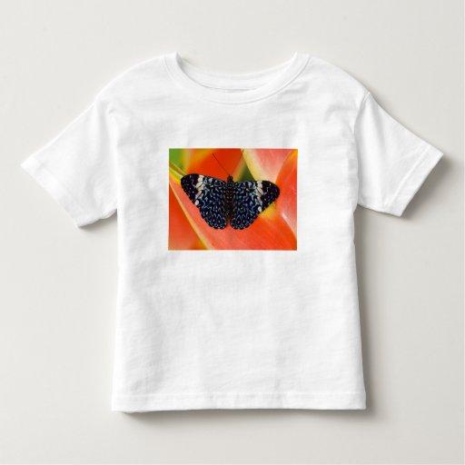 Sammamish, Washington. Tropical Butterflies 53 Toddler T-shirt
