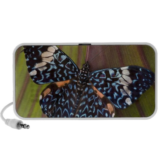 Sammamish, Washington. Tropical Butterflies 54 Mini Speaker