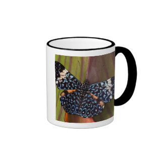 Sammamish, Washington. Tropical Butterflies 54 Coffee Mug