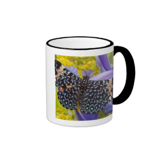 Sammamish, Washington. Tropical Butterflies 55 Mugs