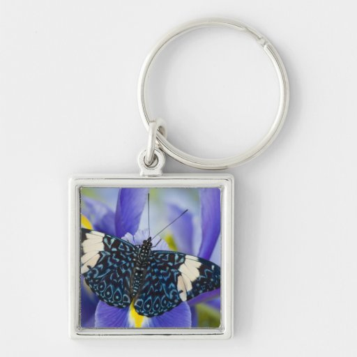 Sammamish, Washington. Tropical Butterflies 56 Silver-Colored Square Keychain
