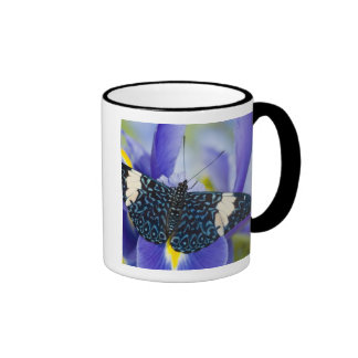 Sammamish, Washington. Tropical Butterflies 56 Coffee Mugs