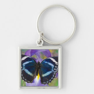 Sammamish, Washington. Tropical Butterflies 57 Keychain