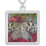 Sammamish, Washington. Tropical Butterflies 63 Square Pendant Necklace