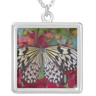 Sammamish, Washington. Tropical Butterflies 63 Square Pendant Necklace