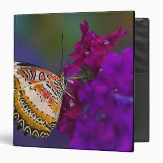 Sammamish, Washington. Tropical Butterflies 64 Vinyl Binders