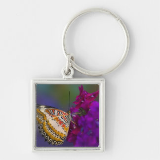 Sammamish, Washington. Tropical Butterflies 64 Keychain