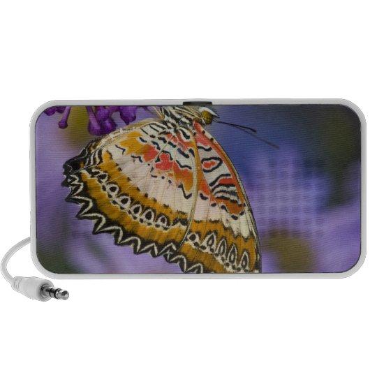 Sammamish, Washington. Tropical Butterflies 65 Mini Speaker