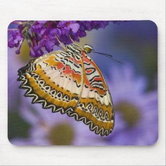Sammamish, Washington. Tropical Butterflies 65 Mouse Pad