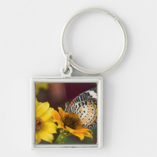 Sammamish, Washington. Tropical Butterflies 66 Keychain