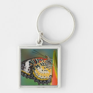 Sammamish, Washington. Tropical Butterflies 67 Keychain