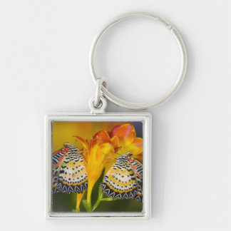 Sammamish, Washington. Tropical Butterflies 68 Keychain