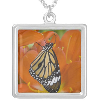 Sammamish, Washington. Tropical Butterflies 69 Square Pendant Necklace