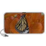 Sammamish, Washington. Tropical Butterflies 69 Speaker System
