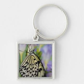 Sammamish, Washington. Tropical Butterflies 6 Keychain
