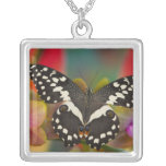 Sammamish, Washington Tropical Butterfly 10 Square Pendant Necklace
