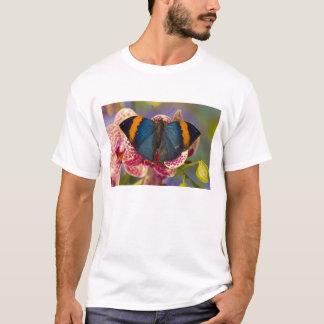Sammamish Washington Tropical Butterfly 11 T-Shirt