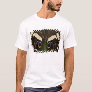 Sammamish, Washington Tropical Butterfly 12 T-Shirt