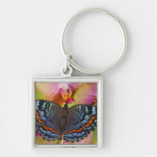 Sammamish Washington Tropical Butterfly 2 Keychain