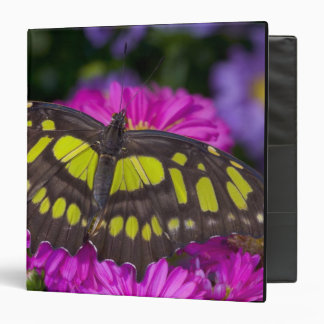 Sammamish, Washington Tropical Butterfly 30 Binder