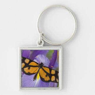 Sammamish, Washington Tropical Butterfly 34 Keychain